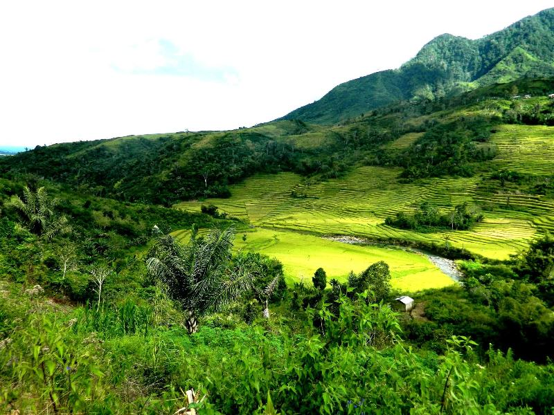 KOMODO – THE 17 ISLAND {RIUNG)- KELIMUTU 12 DAYS 11 NIGHTS